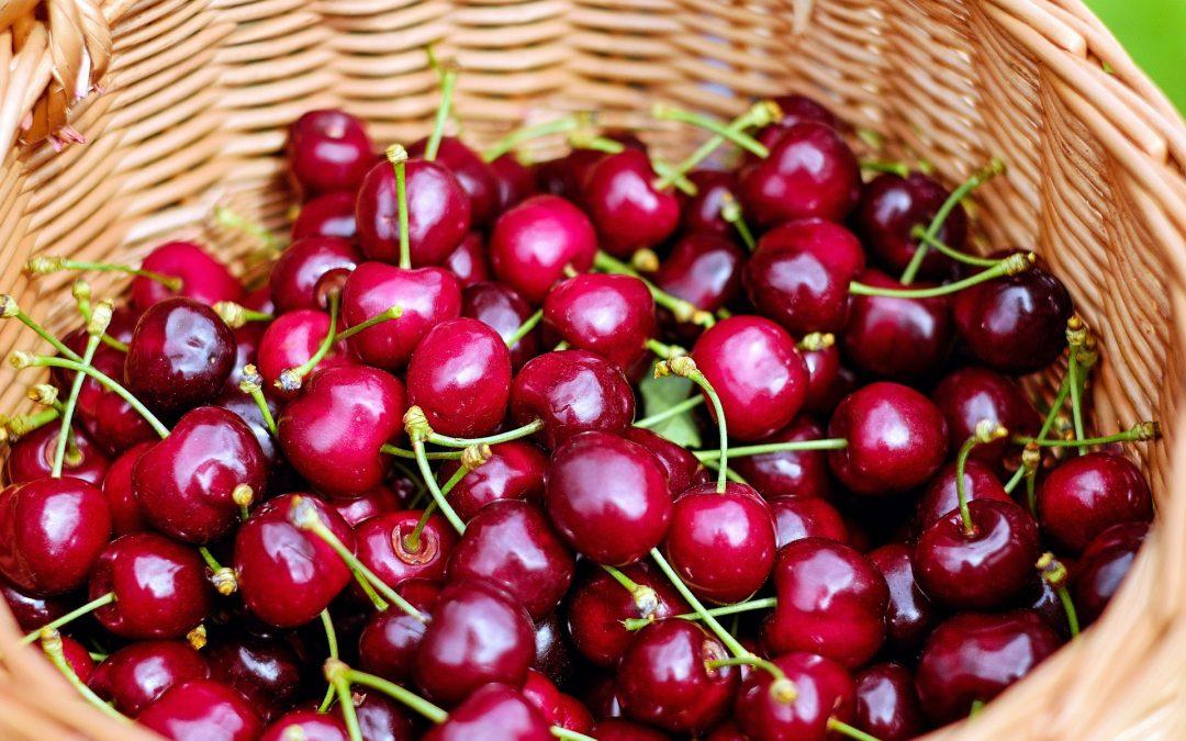 Megkezdődött a cseresznye árusítás