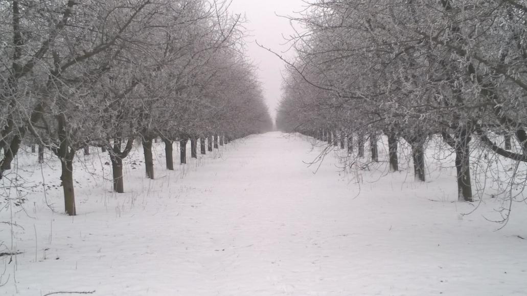 Téli nyitva tartás