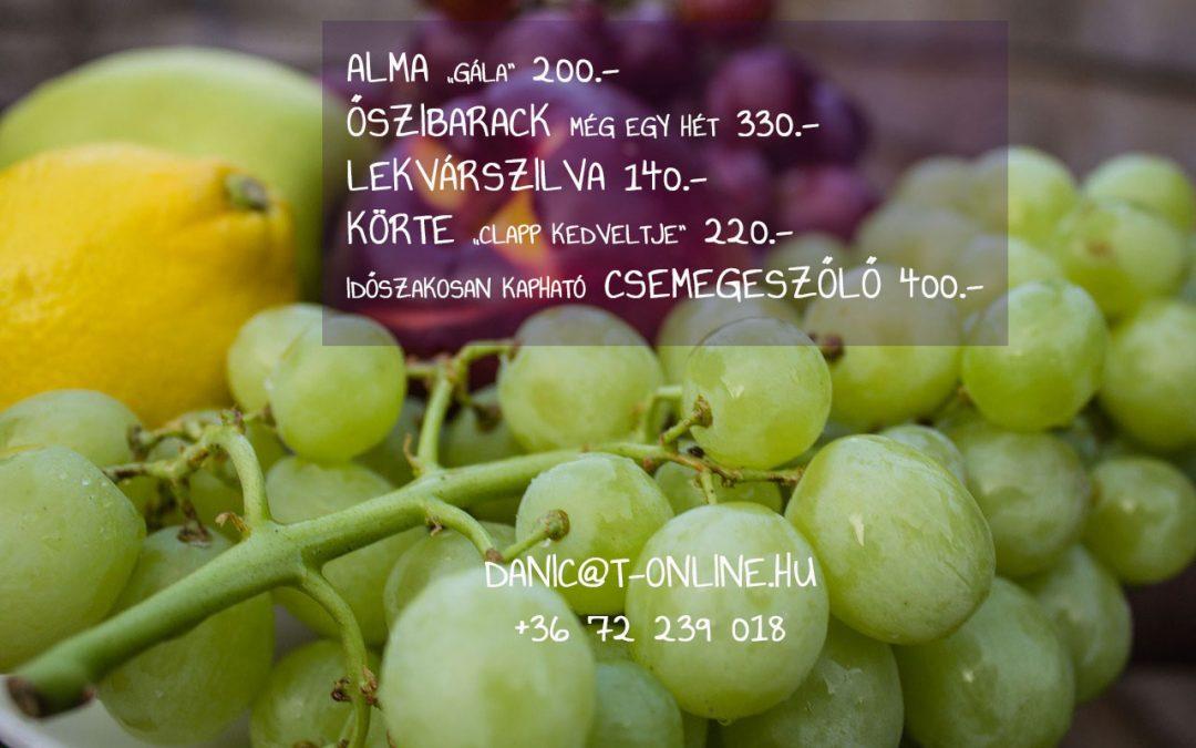 Kapható az alma, szőlő!